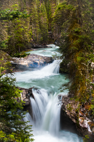 A small river becomes a waterfall, coursing through Johnston Canyon